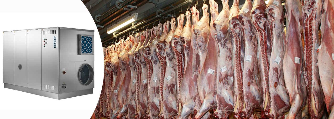 Ambale Desiccant Dehumidifiers for Meat Factories
